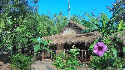 Yogaroma 2021 Retreats